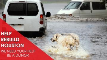 Help Us Help Houston Harvey Victims